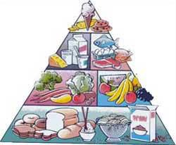 Dietas para bajar de peso sin pasar hambre